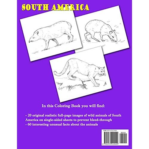 Buy Coloring Book South America Animals 20 Realistic Pictures 60 Unique Facts About Animals Animal Planet Paperback September 6 2019 Online In Bahrain 1079222928
