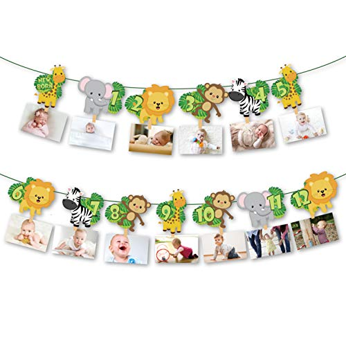 Cc Home Jungle Safari 1st Birthday Photo Banner Wild One 12 Months Newborn Baby Milestone Photography Garland For Birthday Party Zoo Animal Theme Photo Booth Backdrop Wild One First Birthday Decorations Buy Products