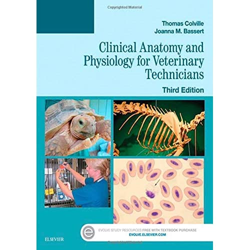 Ubuy Bahrain Online Shopping For Anatomy And Physiology In Affordable Prices