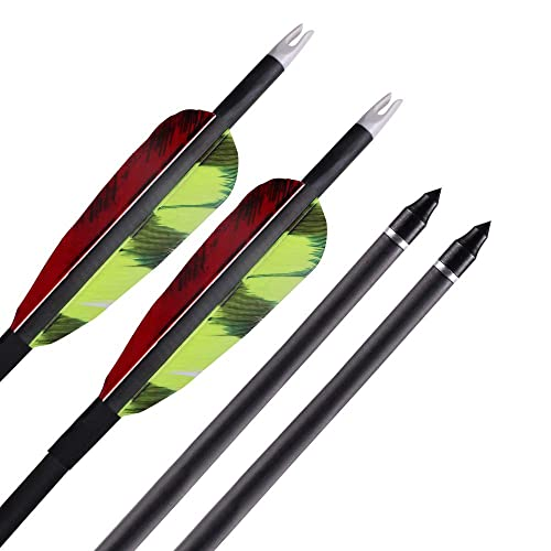 Tongtu Outdoor 6pcs 31inch Archery Carbon Arrows Hunting Arrows 350 Spine with