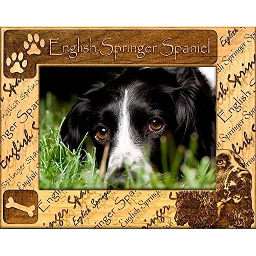 Buy Gwp English Springer Spaniel Engraved Alderwood Frame In 4 Sizes 0075 Online In Bahrain B01n65cpk8