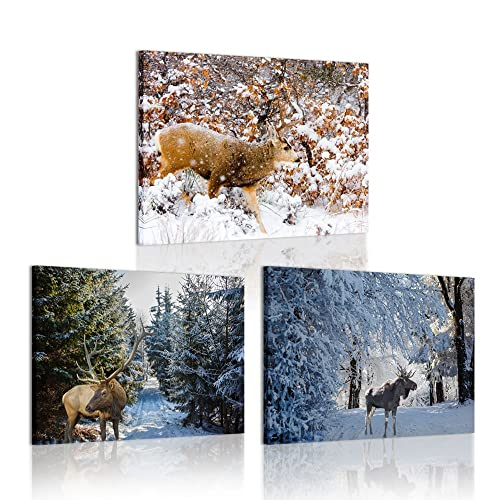 Buy Iknow Foto 3 Piece Wall Art Painting Red Deer Stage In Autumn Forest Pictures Prints On Canvas Animal Moose In Yellow National Park Art Work For Home Modern Decoration 12x16inchx3pcs Online
