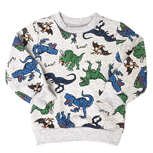 Popshion Boys Cartoon Long Sleeve Pullover Tops Toddler Boy Cotton Dinosaur Space T-Shirts Top Tee for Kids 1-7T
