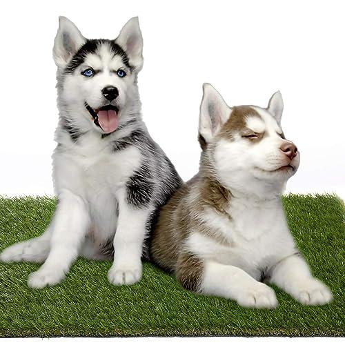 Buy Kunta Garden Pet Turf Grass Mat 17 X 24 35mm Pile Height