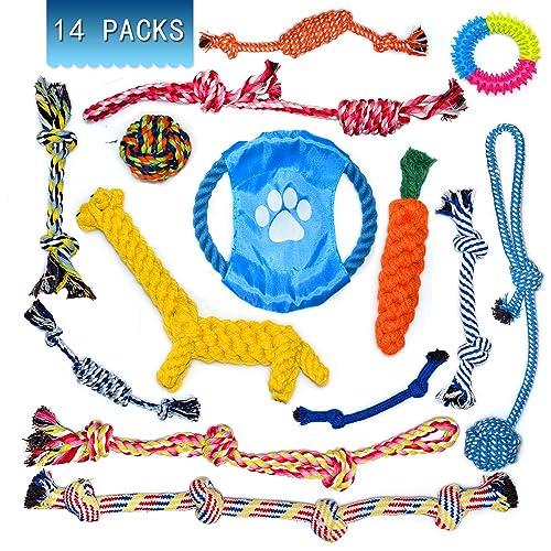 B/ûtt Plugs Beads Massage Toys Back Massage Toys FBD542 Soft /Àn/âles Trainer Kit