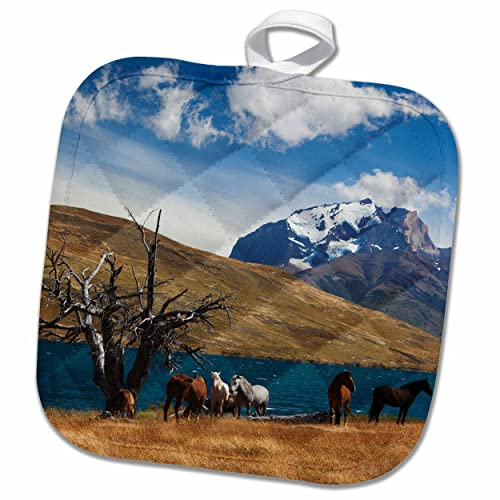 3d Rose Chile Magallanes Region Torres Del Paine Np Laguna Azul Horses Pot Holder 8 X 8 Buy Products Online With Ubuy Bahrain In Affordable Prices B01n0eq9b6